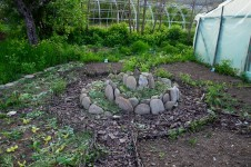 12-grădina-bio-amurtel